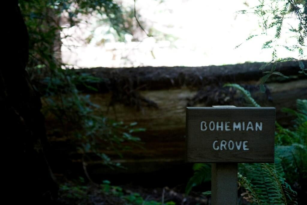 Bohemian Grove - Sueños viajeros