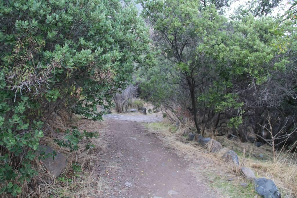Parque Natural Cantalao, Chile