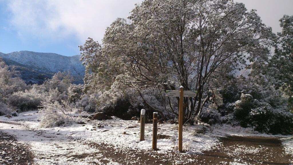 Parque Natural San Carlos de Apoquindo, Chile