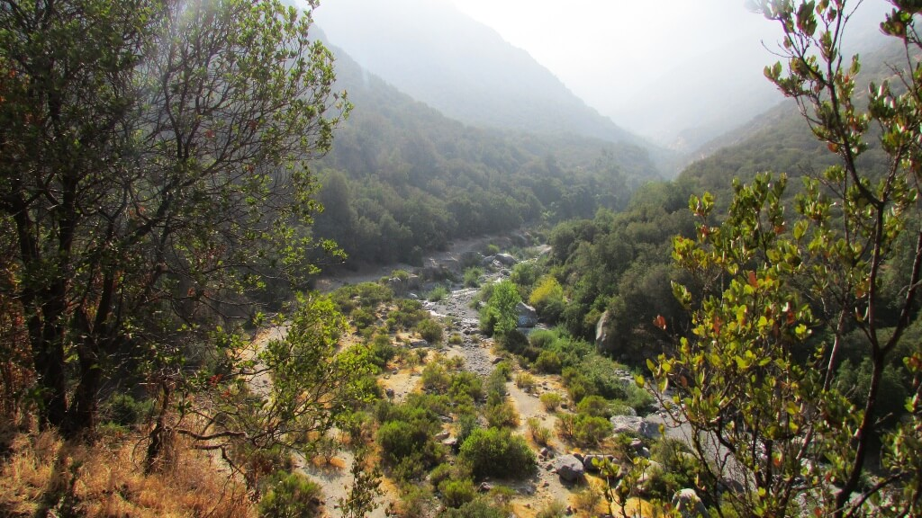 Parque Natural Quebrada de Macul, Chile