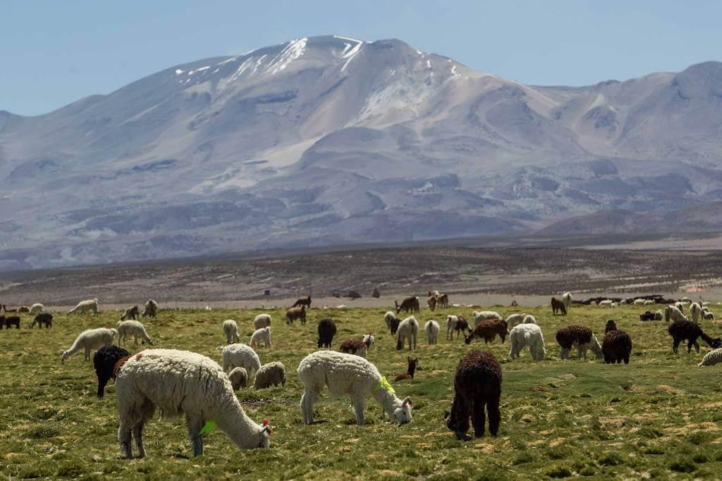 Colchane, Chile