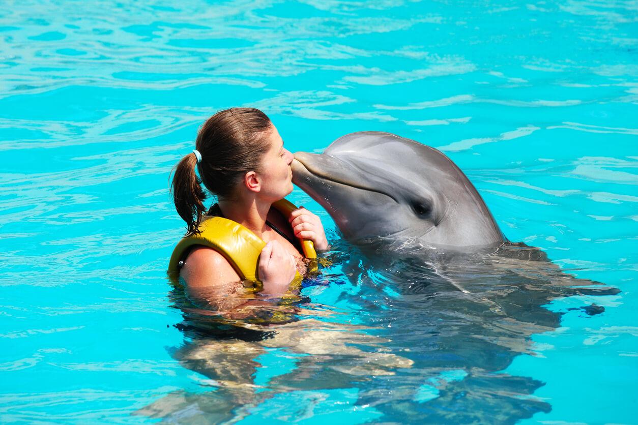 Mujer nadando con delfines