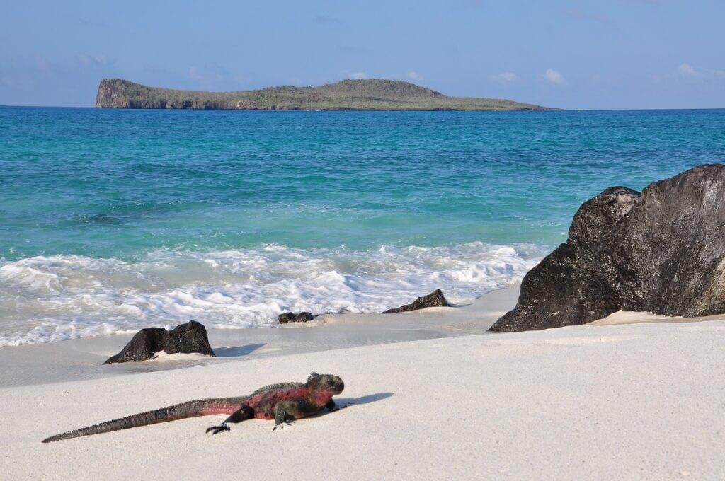 Playa Galápagos, Ecuador