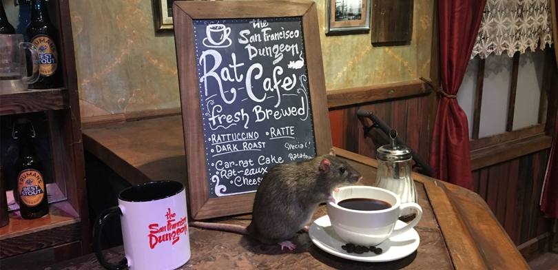 The Rat Cafe, San Francisco, Estados Unidos