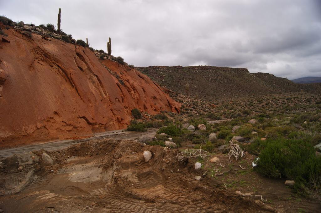 Reserva Nacional Alto el Loa - Sueños viajeros