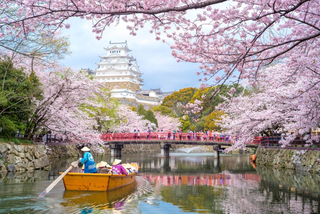 Japón en Sakura - Sueños viajeros
