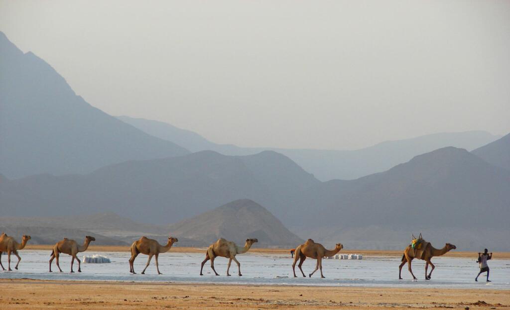 Yibuti - Sueños viajeros