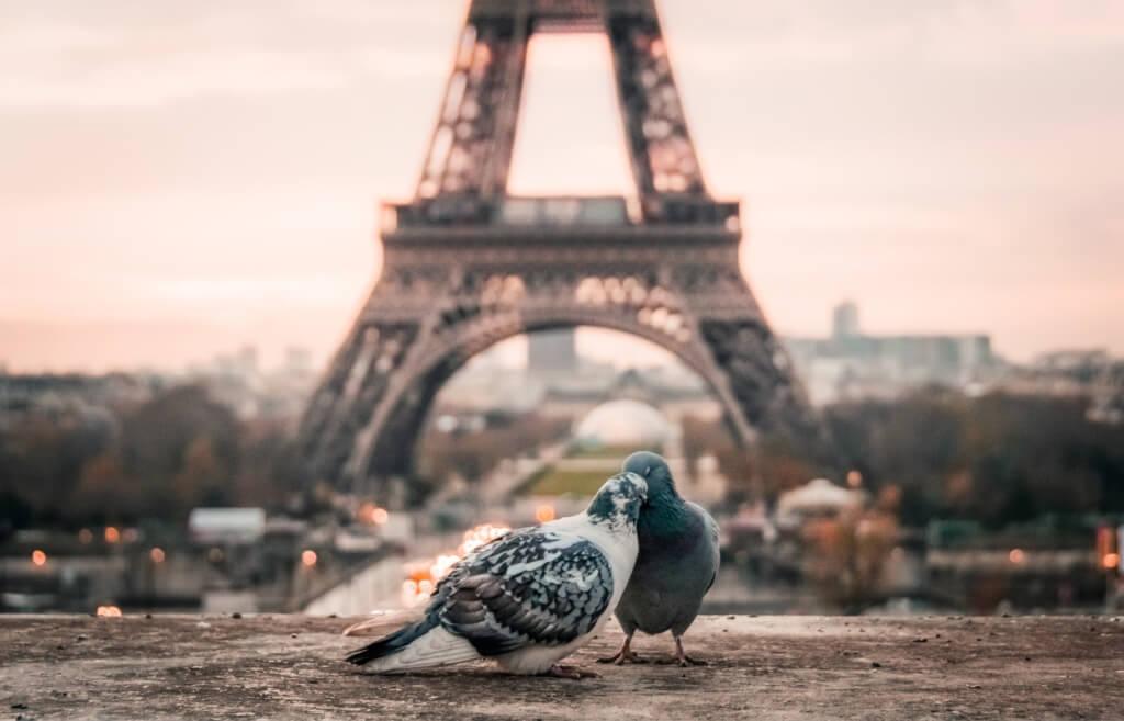 Torre Eiffel - Sueños viajeros