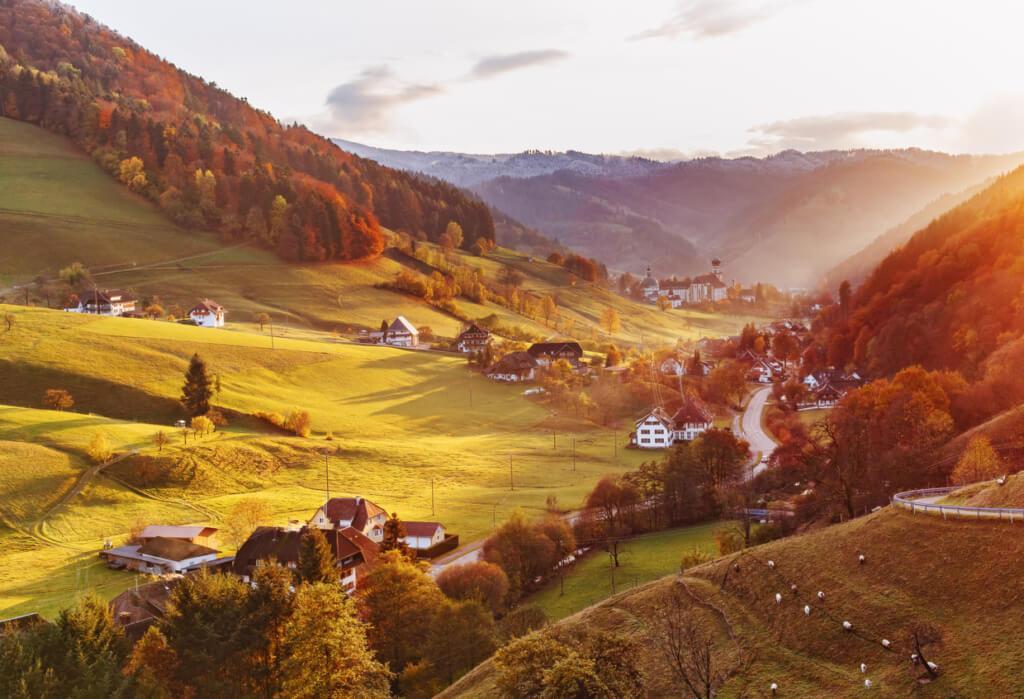Selva Negra en otoño - Sueños viajeros