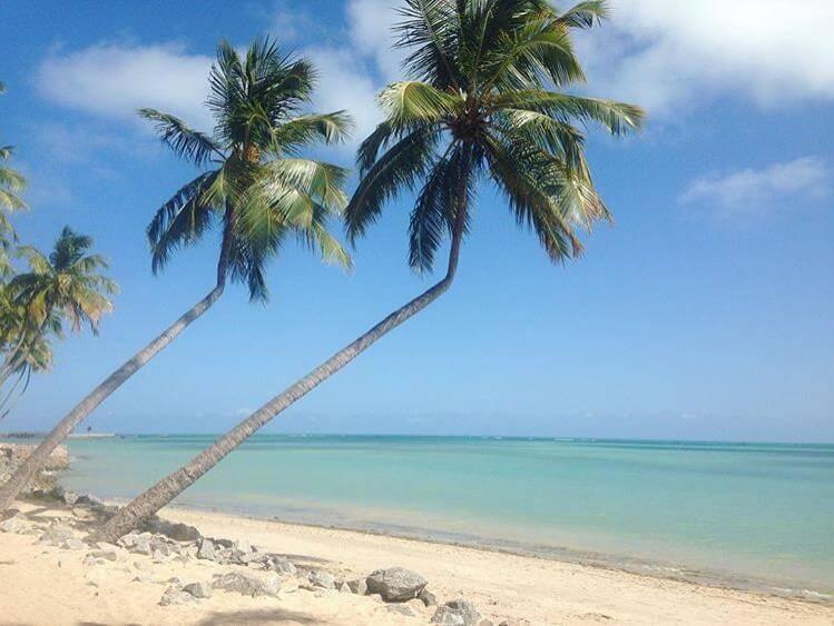 Praia de Pajuçara - Sueños viajeros