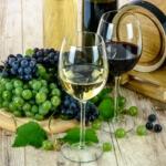 ¿Te gusta el vino? Las mejores viñas para visitar cerca de Santiago