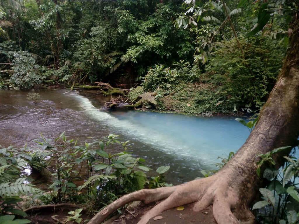 Confluencia del río Celeste en Costa Rica - Sueños Viajeros