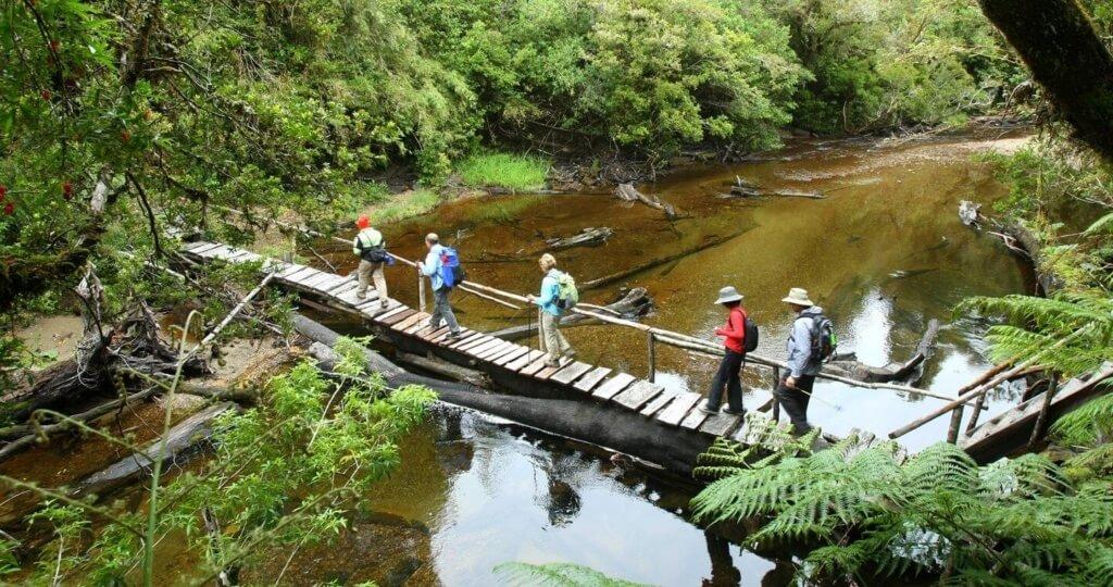 Parque Nacional Alerce Andino - Sueños Viajeros