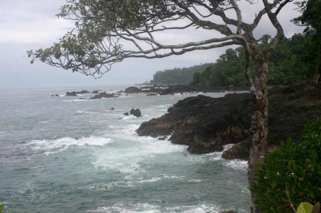 Parque Nacional Natural Ensenada de Utría - Sueños Viajeros