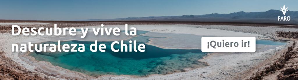 Descubre y vive la naturaleza de Chile - Sueños Viajeros