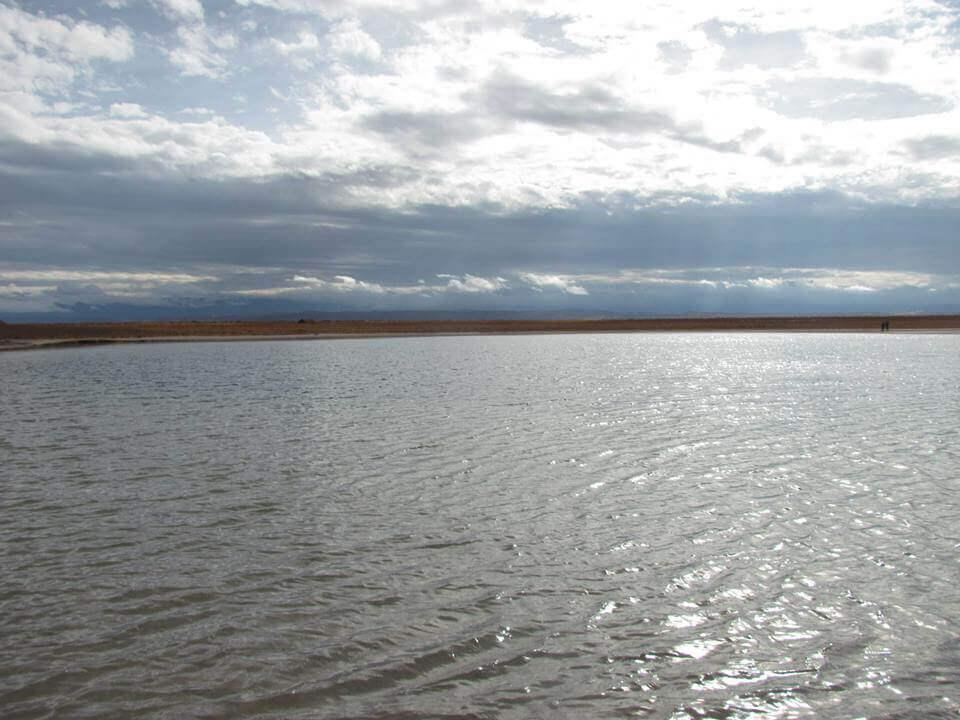 Laguna Cejar - Sueños Viajeros
