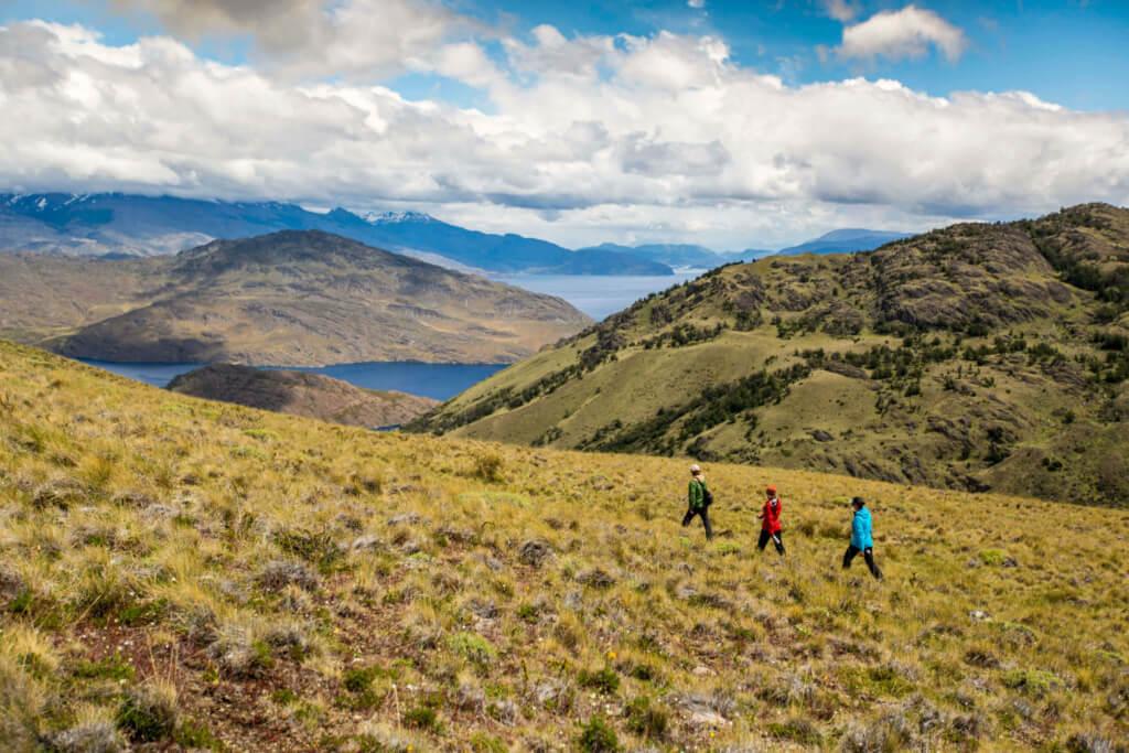 Parque Nacional Patagonia - Sueños Viajeros