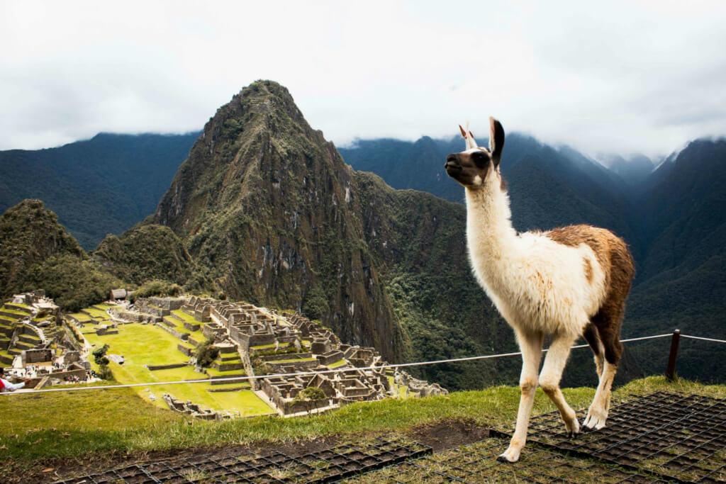Machu Picchu, Perú (Foto: Junior Moran on Unsplash) - Sueños Viajeros