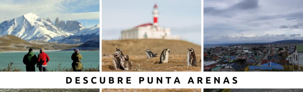 Tours en Punta Arenas con Faro Travel