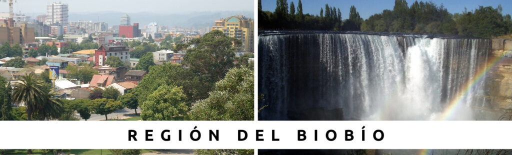 Tours en Región del Biobío con Faro Travel