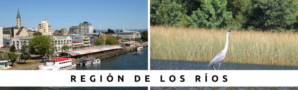 Tours en Región de Los Ríos con Faro Travel