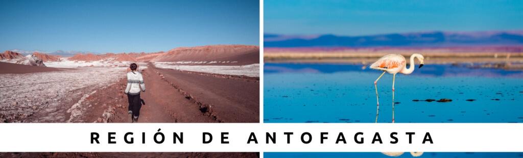 Tours en Región de Antofagasta con Faro Travel