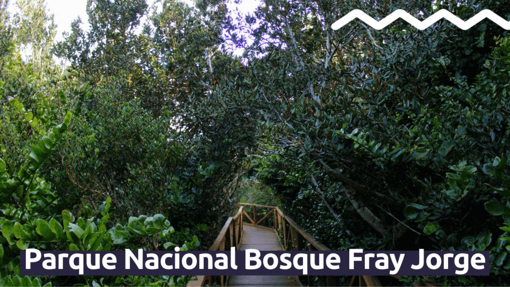 Parque Nacional Bosque Fray Jorge con Faro Travel