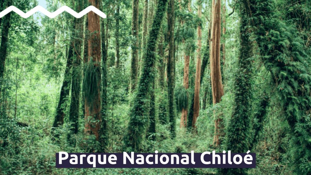 Parque Nacional Chiloé con Faro Travel