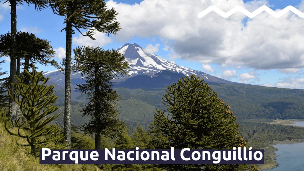 Parque Nacional Conguillío con Faro Travel