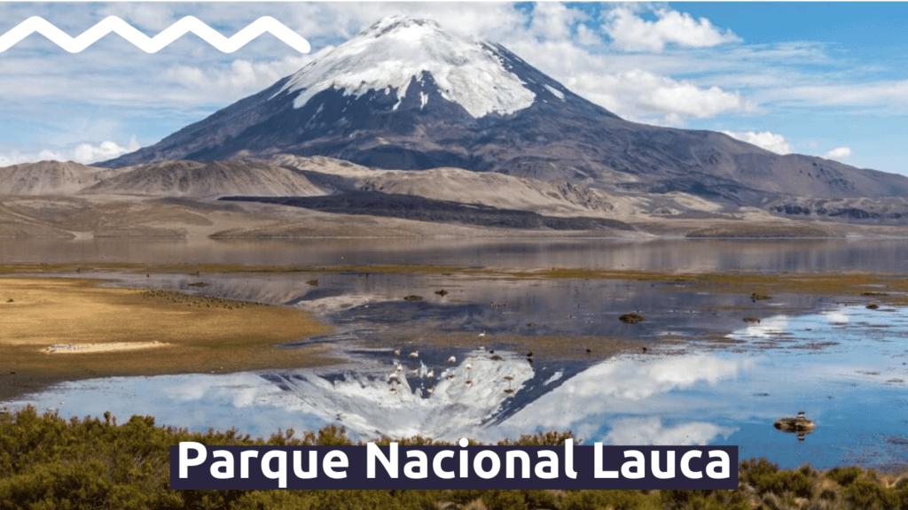 Parque Nacional Lauca con Faro Travel