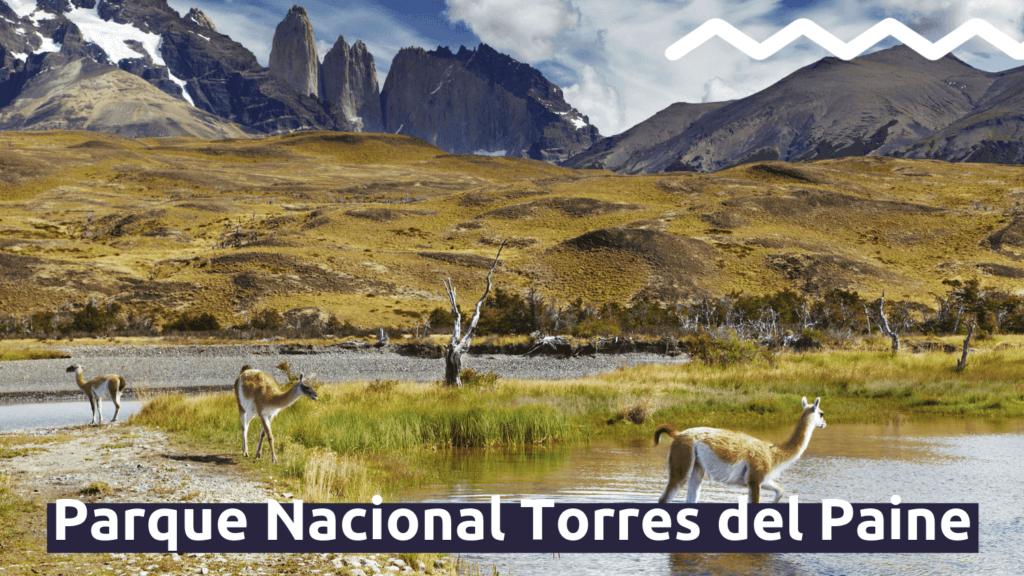 Parque Nacional Torres del Paine con Faro Travel
