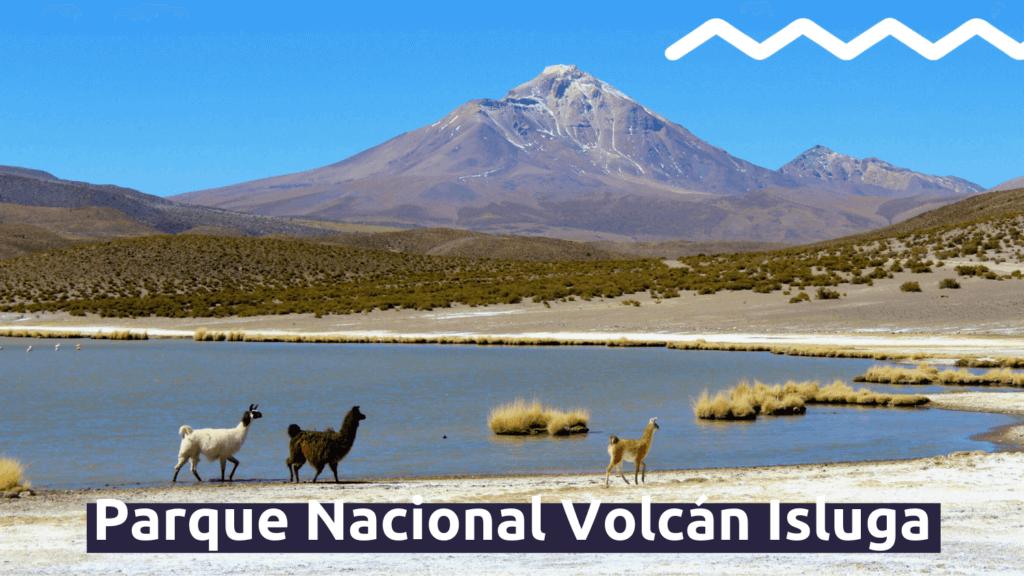 Parque Nacional Volcán Isluga con Faro Travel